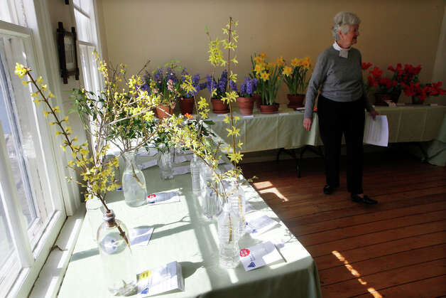 Bev Hennessey welcomes visitors to the NGC Small Standard Flower Show at the Pinkney Museum in Rowayton, Conn. on Sunday, March 10, 2013. The Rowayton Gardeners presented the show with arrangements inspired by the Rowayton Historical Society. Photo: BK Angeletti, B.K. Angeletti / Connecticut Post freelance B.K. Angeletti