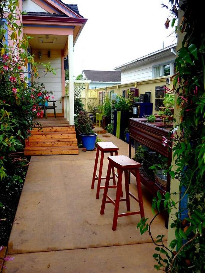 Amy' Stewart's cocktail garden. Entering through the front gate. Jasmine-covered arbor. Photo: Amy Stewart