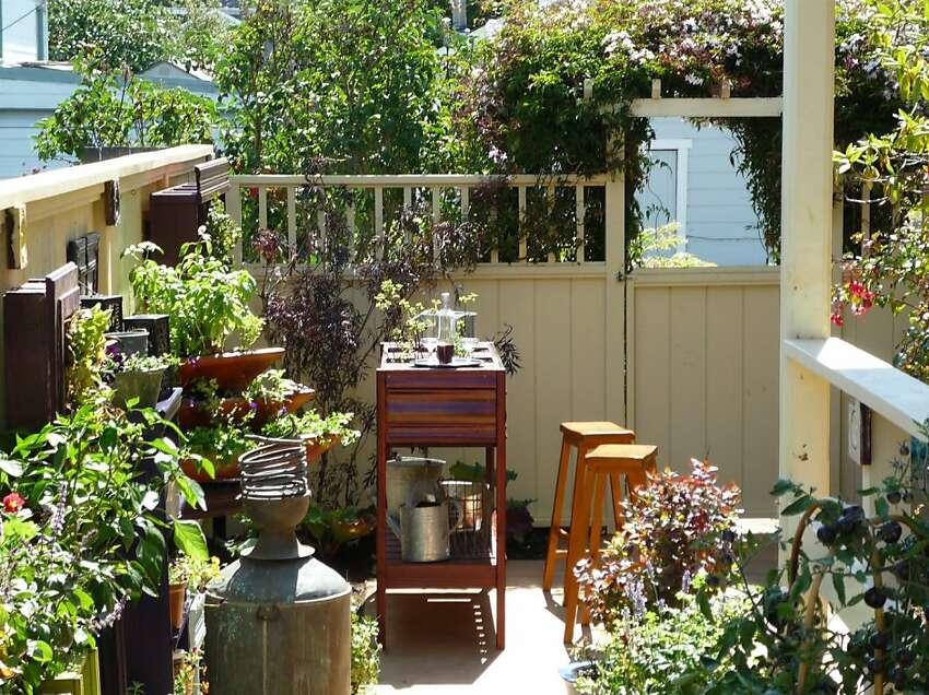 Amy Stewart's cocktail garden