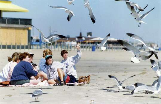 Kendra Hurt, right, motions for the seagulls to go away while Jen Ascher, center with hat, and Lorry Hainsworth, blue sweater, look on. The women are all Cornell graduates reuniting for spring break. March 10, 1994 Photo: John Makely, Houston Chronicle