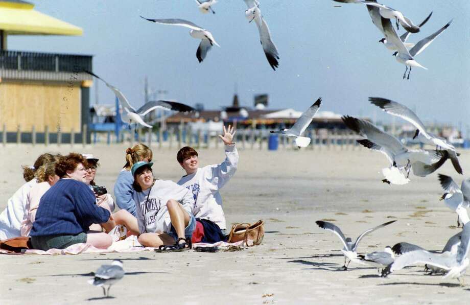 March 10, 1994: Kendra Hurt, right, motions for the seagulls to go away while Jen Ascher, center with hat, and Lorry Hainsworth, blue sweater, look on. The women are all Cornell graduates reuniting for spring break.  Photo: John Makely, Houston Chronicle