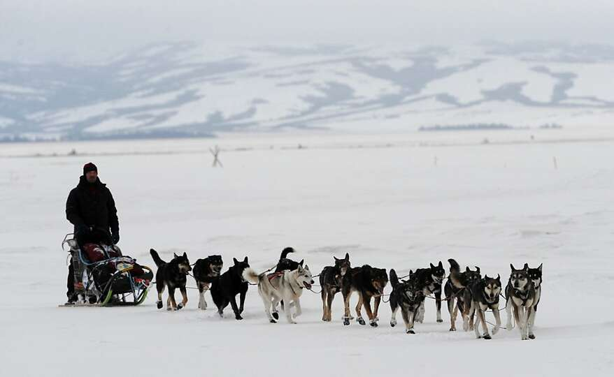 Aaron Burmeister arrives at the Unalakleet, Alaska, checkpoint Sunday, March 10, 2013, during the Id