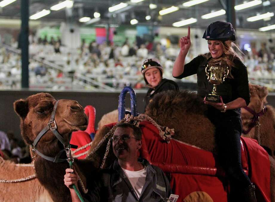 Channel 11 weatherwoman Chita Johnson celebrates after winning the camel race during the Camel & Ostrich Races at Sam Houston Race Park. Photo: James Nielsen, Staff / © 2013  Houston Chronicle