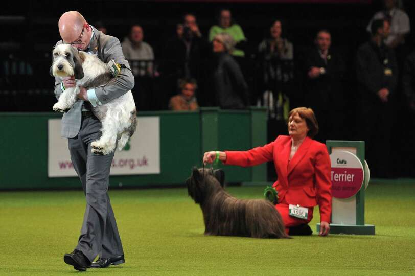 Gavin Robertson and Jilly, a Basset Griffon Vendeen, celebrate winning the Best in Show category at