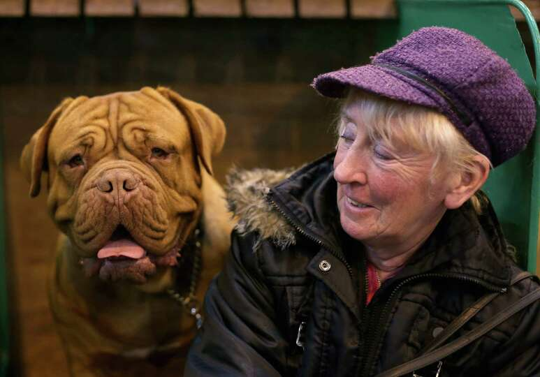 Jennifer Lomas with Isla, a Dogue de Bordeaux during the final day at Crufts Dog Show on March 10, 2