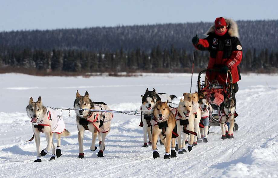 Aliy Zirkle begins the run from White Mountain to the finish in Nome, Alaska, Tuesday, March 12, 2013, during the Iditarod Trail Sled Dog Race. (AP Photo/The Anchorage Daily News, Bill Roth)  LOCAL TV OUT (KTUU-TV, KTVA-TV) LOCAL PRINT OUT (THE ANCHORAGE PRESS, THE ALASKA DISPATCH) Photo: Bill Roth, Associated Press