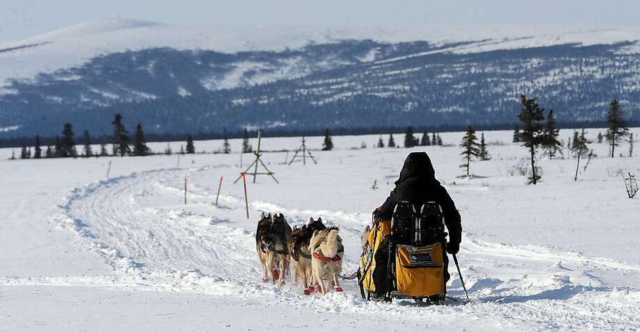 Mitch Seavey leaves White Mountain in Alaska, Tuesday, March 12, 2013, during the Iditarod Trail Sled Dog Race. (AP Photo/The Anchorage Daily News, Bill Roth)  LOCAL TV OUT (KTUU-TV, KTVA-TV) LOCAL PRINT OUT (THE ANCHORAGE PRESS, THE ALASKA DISPATCH) Photo: Bill Roth, Associated Press