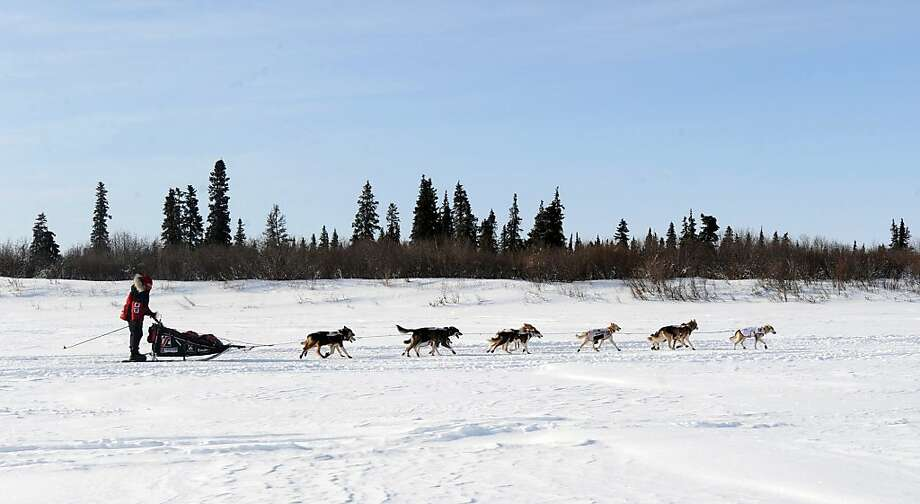 Aliy Zirkle drives her dog team up the Fish River outside White Mountain in Alaska, Tuesday, March 12, 2013, during the Iditarod Trail Sled Dog Race. (AP Photo/The Anchorage Daily News, Bill Roth)  LOCAL TV OUT (KTUU-TV, KTVA-TV) LOCAL PRINT OUT (THE ANCHORAGE PRESS, THE ALASKA DISPATCH) Photo: Bill Roth, Associated Press