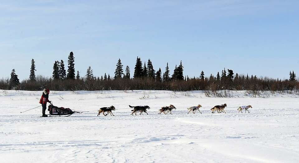 Aliy Zirkle drives her dog team up the Fish River outside White Mountain in Alaska, Tuesday, March 1