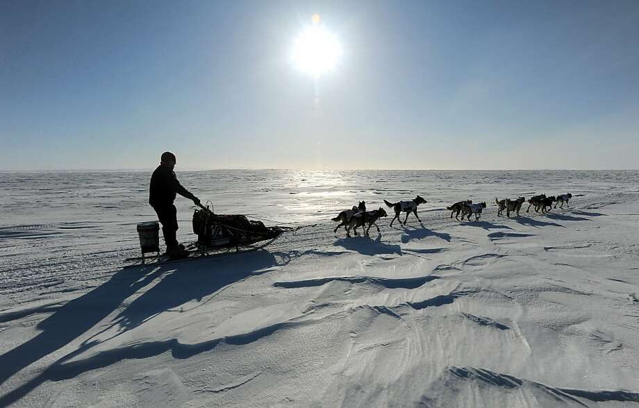 Aily Zirkle drives her dog team towards Elim after leaving the checkpoint at Koyuk in Alaska  during the Iditarod Trail Sled Dog Race on Monday, March 11, 2013. (AP Photo/The Anchorage Daily News, Bill Roth) Photo: Bill Roth, Associated Press