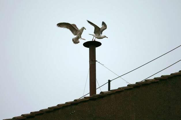 Birds fly off the chimney on the roof of the Sistine Chapel as the College of Cardinals attempt to elect a new Pope on March 13, 2013 in Vatican City, Vatican. Pope Benedict XVI's successor is being chosen by the College of Cardinals in Conclave in the Sistine Chapel. The 115 cardinal-electors, meeting in strict secrecy, will need to reach a two-thirds-plus-one vote majority to elect the 266th Pontiff. Photo: Peter Macdiarmid, Getty Images / 2013 Getty Images