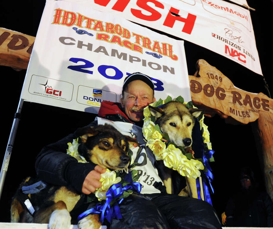 Mitch Seavey became the oldest winner and a two-time Iditarod champion when he drove his dog team under the burled arch in Nome on Tuesday evening, March 12, 2013. He sits with his two lead dogs, Tanner, left and Taurus, right. Photo: Bill Roth, Associated Press / The Anchorage Daily News