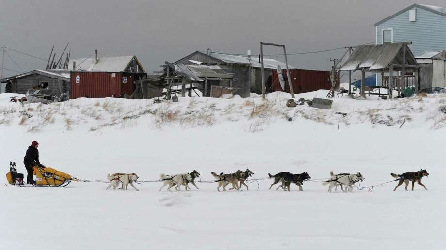 Musher Mitch Seavey arrives at the Unalakleet, Alaska, checkpoint Sunday, March 10, 2013, during the Iditarod Trail Sled Dog Race. Photo: Bill Roth, Associated Press / The Anchorage Daily News