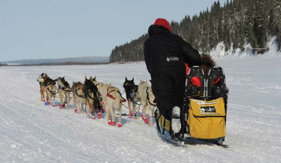Mitch Seavey is the first musher to leave White Mountain, Alaska, toward the finish line in Nome on Tuesday, March 12, 2013, during the Iditarod Trail Sled Dog Race. Photo: Bill Roth, McClatchy-Tribune News Service / Anchorage Daily News