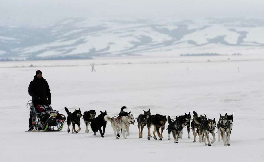 Aaron Burmeister was the second musher to reach the Bering Sea coast as he arrives in Unalakleet, Alaska, Sunday, March 10, 2013. Photo: Bill Roth, McClatchy-Tribune News Service / Anchorage Daily News