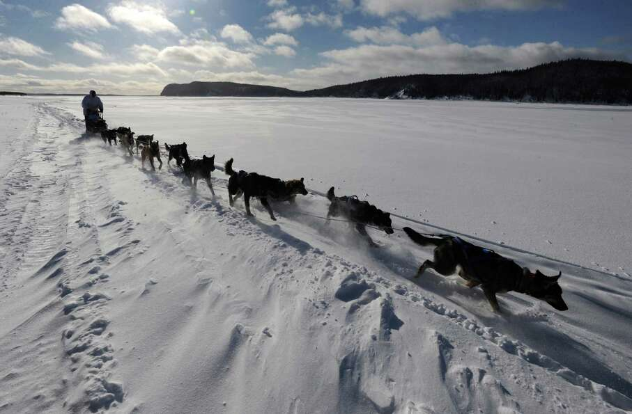 Four-time Iditarod champion Martin Buser drives his dog team up the wind-swept Yukon River as he nea