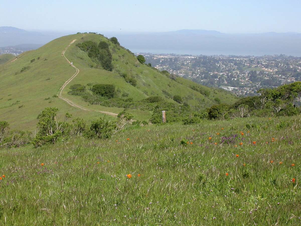 Nimitz Way, Tilden Regional Park: The tops of ridges in Tilden Regional Park in the East Bay hills offer inspiring views around the Bay Area.