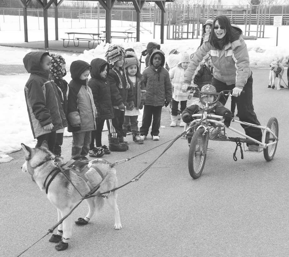 Submitted photo Park Terrace Elementary School?s theme for the March FM Bound Program was The Iditarod Sled Dog Race. The Gloversville kindergarten classes took part in morning activities including listening to ?Granite,? a story about four-time Iditarod champion Susan Butcher and her lead dog. The students took a ride on a sled provided by Kate VanSlyke of Adirondack Dog Sledding. Above, Hayden Ryan, in cart, prepares for a ride with VanSlyke.