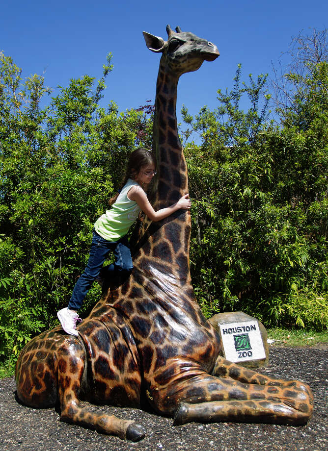 Madilyn Ryzewski, 9, plays on a giraffe at the Houston Zoo during spring break, Wednesday, March 13, 2013, in Houston. Photo: Cody Duty, Houston Chronicle / © 2013 Houston Chronicle