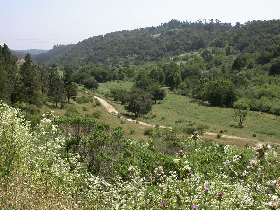 The view of Grass Valley from the Bort Meadow Staging Area on Redwood Road