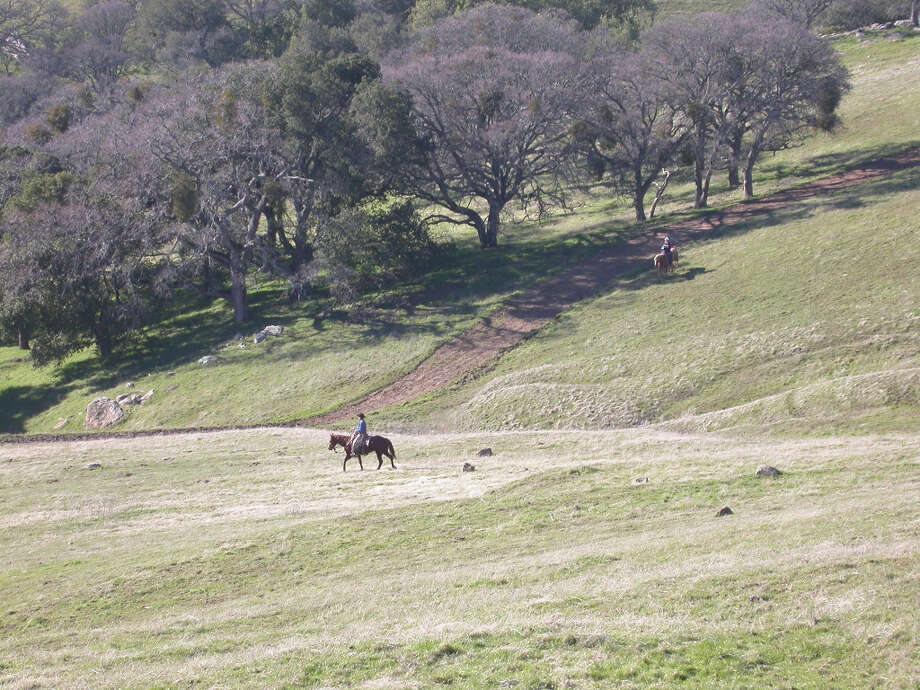 Horseback riding in secluded valley at Morgan Territory