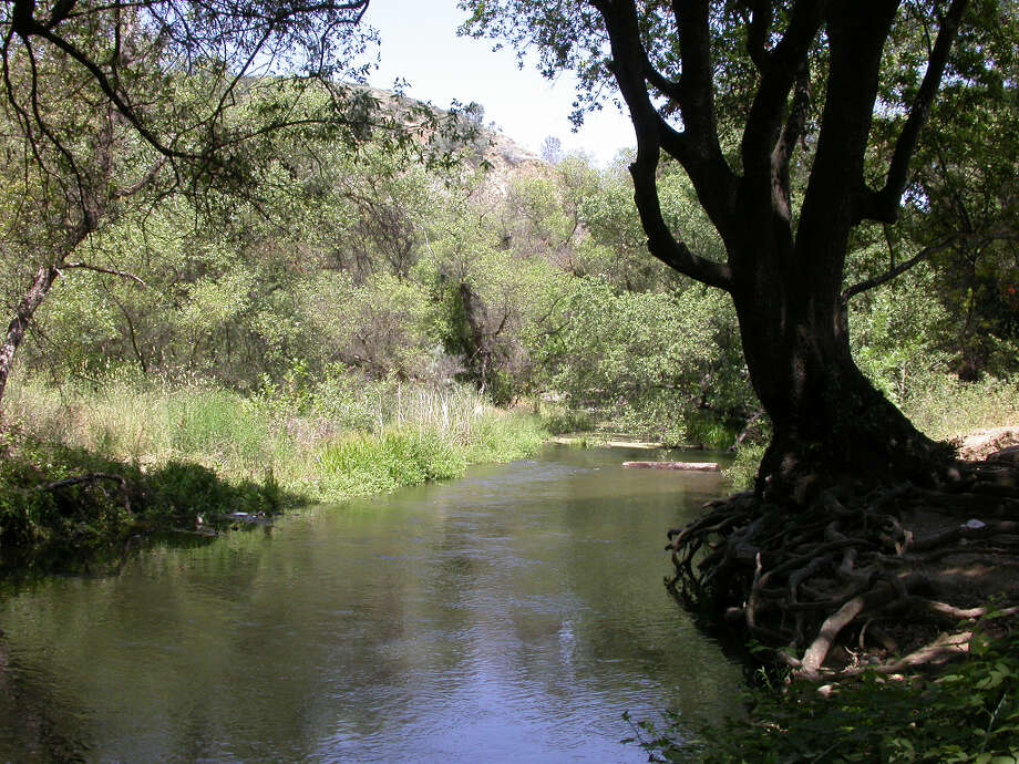 Coyote Creek runs downstream of Anderson Dam and provides picnic sites