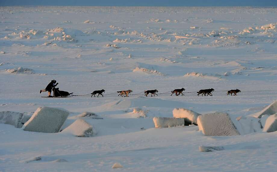Cim Smyth drives his team across the Bering Sea ice as he nears Nome, Alaska, during the finish of the Iditarod Trail Sled Dog Race on Wednesday morning, March 13, 2013. (AP Photo/The Anchorage Daily News, Bill Roth) Photo: Bill Roth, Associated Press