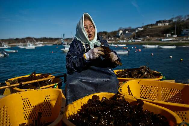 The old woman and the seaweed: Seventy-eight-year-old Reiko Takahashi, who lost her house and two fishing boats in the 2011 tsunami, prepares seaweed that she collects in the waters near Tomari port in Minamisanriku, Japan. Photo: Athit Perawongmetha, Getty Images