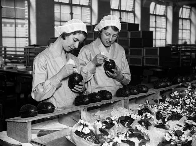 Two women at the Cadbury's chocolate factory in Bournville, in the West Midlands, England, join together chocolate Easter egg halves in 1932. Photo: Fox Photos, / / Hulton Archive