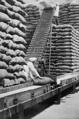 Cocoa beans arrive at a Cadbury's factory. Photo: Mansell, / / Time & Life Pictures Creative
