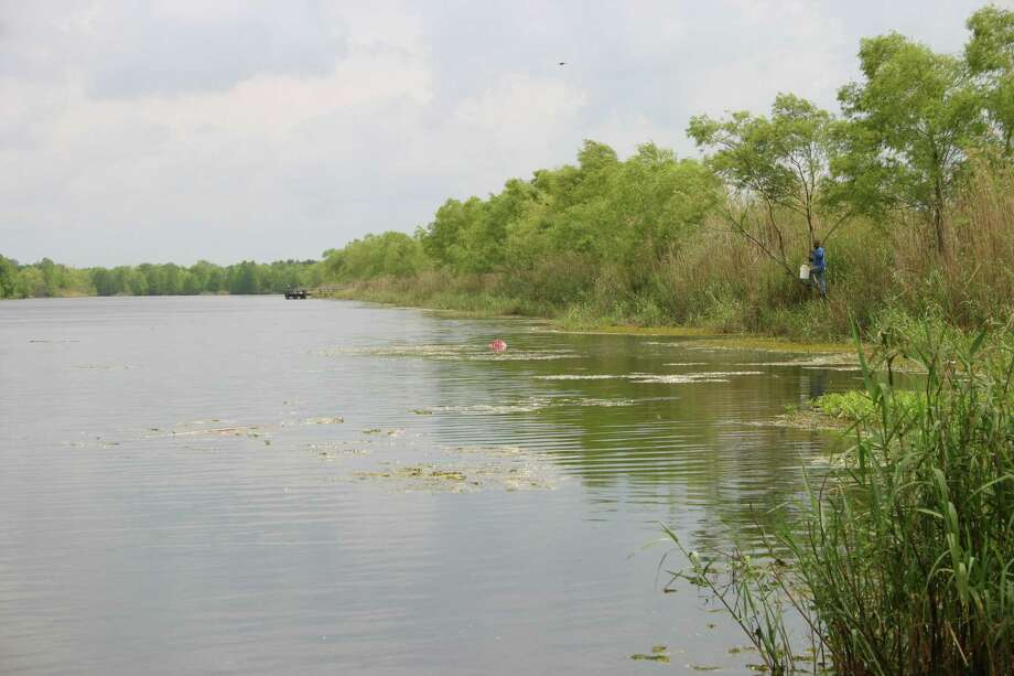 Texas freshwater fish stocked by tpwd houston chronicle for Fishing in houston