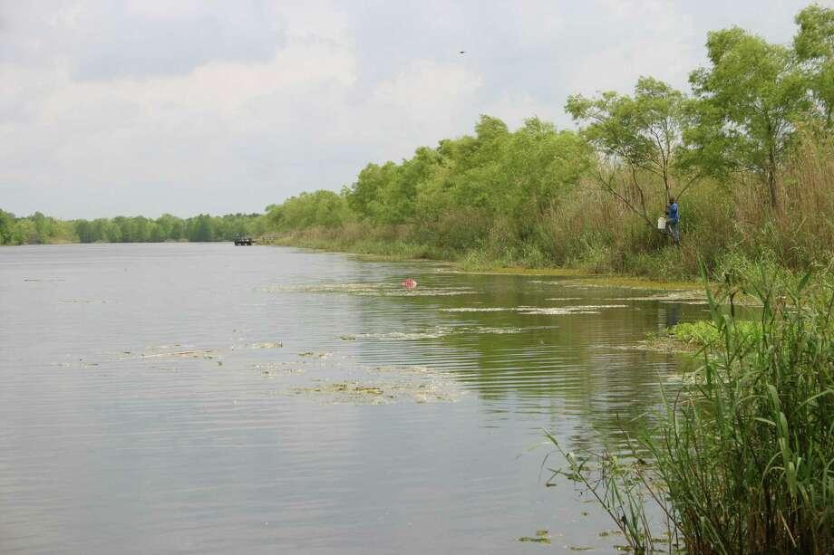 Texas freshwater fish stocked by tpwd houston chronicle for Lake houston fishing