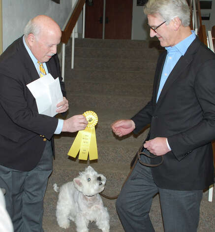 "Malcolm, a 12-year-old West Highland terrier, shared third prize in the WASA ""Westport Top Dog"" contest Thursday. Here, First Selectman Gordon Joseloff, left, presents ribbon to Malcolm and owner Scott Bennewitz.   WESTPORT NEWS, CT 3/14/13 Photo: Jarret Liotta / Westport News contributed"