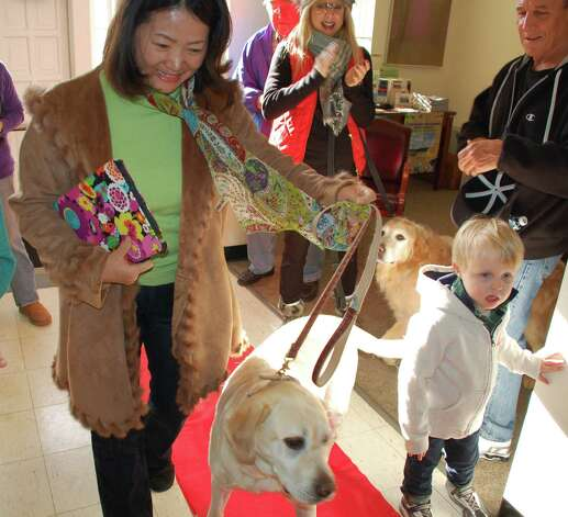 "Kim, a 10-year-old yellow Lab, was a fourth-place ribbon winner in the annual Westport Animal Shelter Advocates' ""Top Dog"" contest on Thursday. The pooch attended the Town Hall ceremony with owner Michelle Pactor.  WESTPORT NEWS, CT 3/14/13 Photo: Jarret Liotta / Westport News contributed"