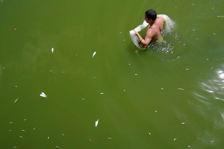 A man with a fishing net wades  the waters of the Rodrigo de Freitas lagoon, beside the Corcovado mountain in Rio de Janeiro, Brazil on March 13, 2013. Photo: CHRISTOPHE SIMON, AFP/Getty Images / AFP