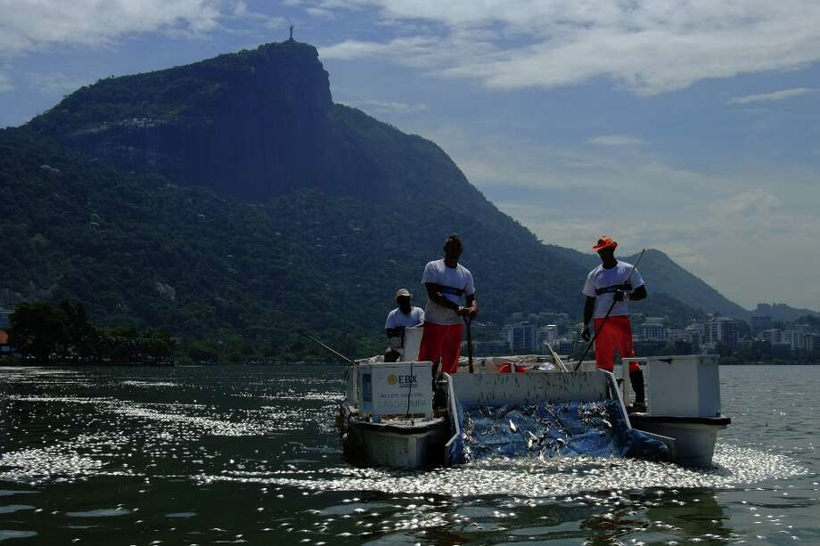 Municipal workers pick up tons of dead fish floating on the waters of the Rodrigo de Freitas lagoon, beside the Corcovado mountain in Rio de Janeiro, Brazil on March 13, 2013. Photo: CHRISTOPHE SIMON, AFP/Getty Images / AFP