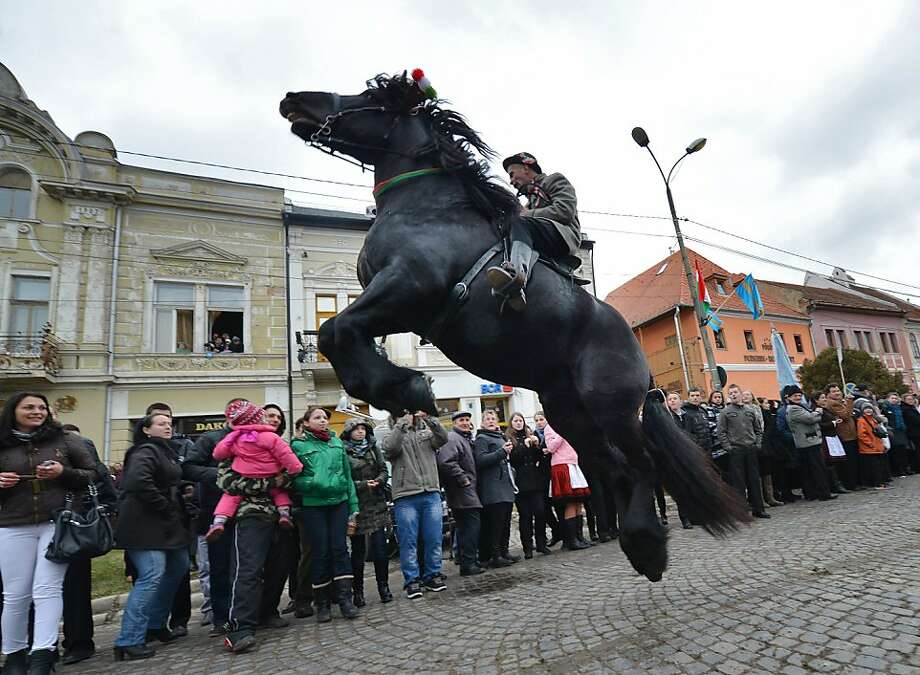 Let's see a Clydesdale do this, Budweiser: A workhorse goes airborne during Hungary's National Day parade in Targu Secuiesc, Romania. Thousands of ethnic Hungarians from Transylvania celebrated the 1848 Hungarian Revolution. Photo: Daniel Mihailescu, AFP/Getty Images