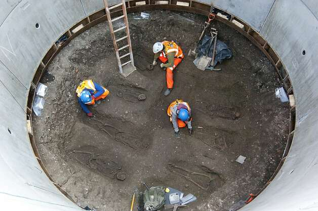 Plague grave: Archaeologists work to uncover skeletons from what is believed to be a mass grave for victims of the Black Death in London. Bones were discovered during excavations to create a Crossrail tunnel shaft under Charterhouse Square. So far 13 skeletons have been exhumed. Photo: Crossrail, AFP/Getty Images