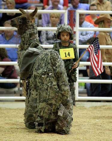 "Tanner White, 10, dressed his llama  ""Lil Scott""  military style, and later took second place during the Youth Llama and Alpaca Costume Show at the Reliant Arena at the Houston Livestock Show and Rodeo Friday, March 15, 2013, in Houston. Photo: Karen Warren, Houston Chronicle / © 2013 Houston Chronicle"