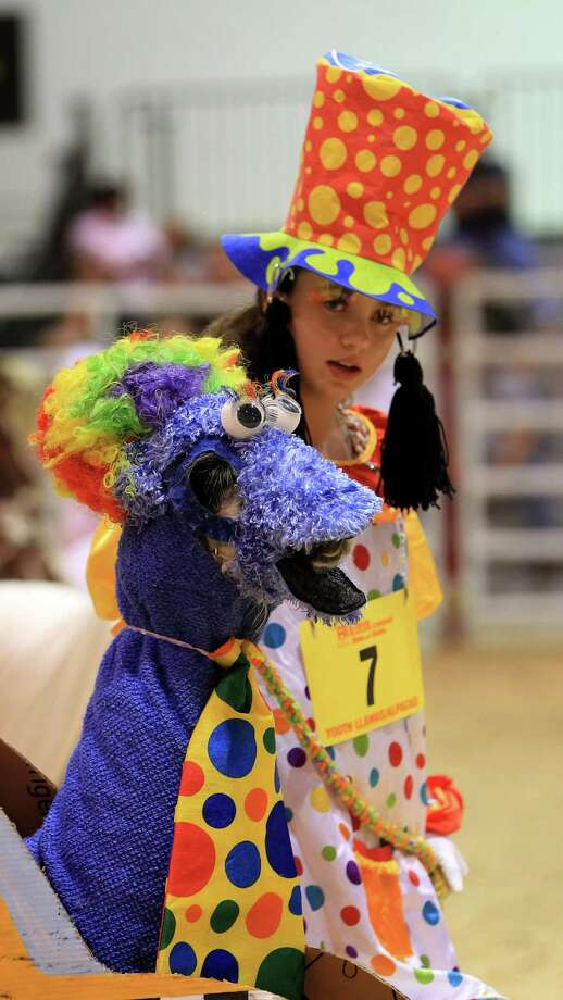 "First place winner Hunter Snow, 14, with her llama ""Stormy"" who was dressed as the Cookie Monster in a clown taxi during the Youth Llama and Alpaca Costume Show at the Reliant Arena at the Houston Livestock Show and Rodeo Friday, March 15, 2013, in Houston. Photo: Karen Warren, Houston Chronicle / © 2013 Houston Chronicle"