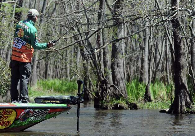 Angler Dennis Tietje makes a cast under a cypress tree on the second day of the 2013 Bassmasters Elite Series Sabine River Challenge. Photo taken: Randy Edwards/The Enterprise