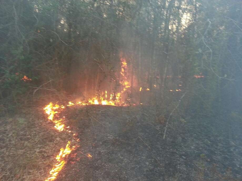 A controlled burn in Plum Grove has gotten out of control on March 15, 2013. Photo: Scott Engle / Montgomery Co. Police Reporter