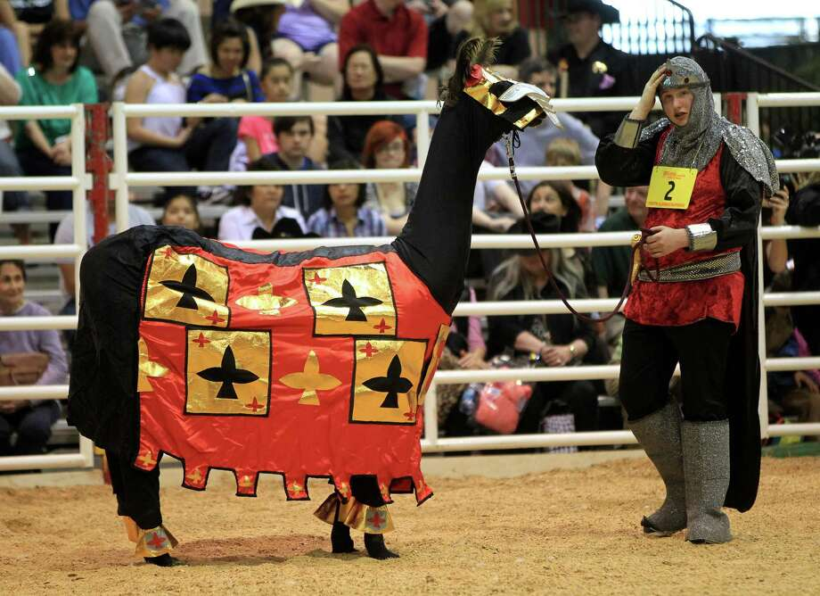 "Cody Carroll, 16, who dressed his llama ""Baby Cakes"" in a knight's attire, won third place during the Youth Llama and Alpaca Costume Show at the Reliant Arena at the Houston Livestock Show and Rodeo Friday, March 15, 2013, in Houston. Photo: Karen Warren, Houston Chronicle / © 2013 Houston Chronicle"