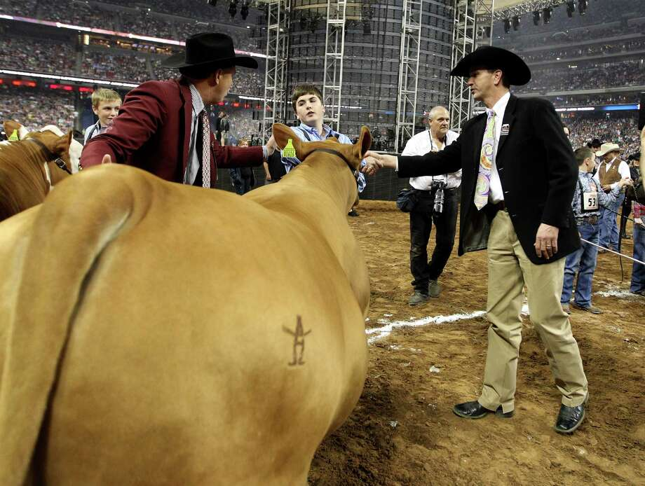 Kelton Long, of Wellington, reacts as he is picked by Dr. Mark Hoge, the judge, after winning the Grand Champion Steer of the Show with his steer Chappie at the Houston Livestock Show and Rodeo Friday, March 15, 2013, in Houston. Photo: Karen Warren, Houston Chronicle / © 2013 Houston Chronicle