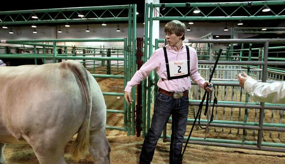 "Robert Hurst, 14, of Friona, says his good-byes to his steer ""Gene Simmons"" who was the Reserve Grand Champion Junior Market Steer after the Champaign Cowgirls bid $210,000 for him during the 2013 Junior Market Steer Auction at the Houston Livestock Show and Rodeo Saturday, March 16, 2013, in Houston. Photo: Karen Warren, Houston Chronicle / © 2013 Houston Chronicle"