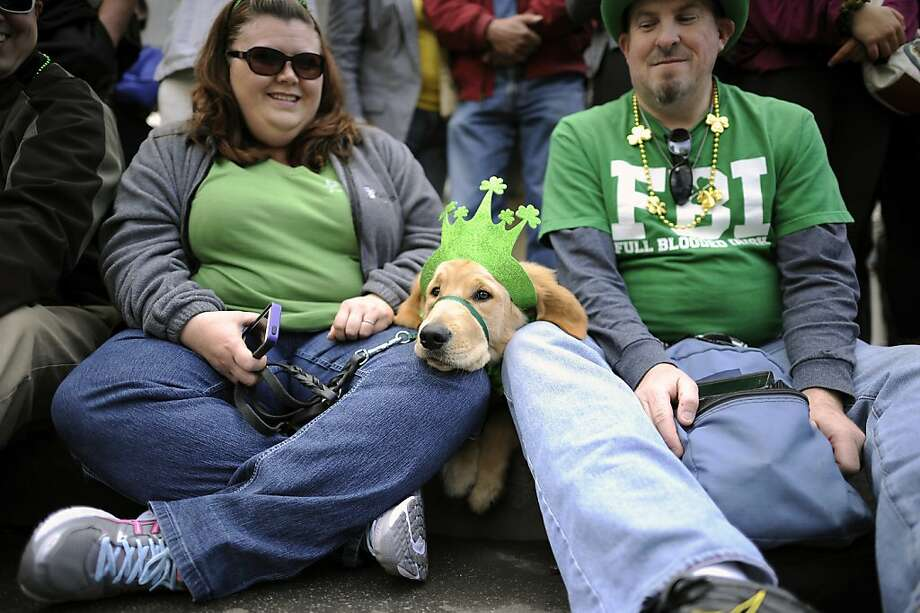"Cassie and John Marks of Peteluma brought their well behaved dog ""Kipling"" with them to the annual St. Patrick's Day Parade in San Francisco, Saturday March 16th, 2013. Photo: Michael Short, Special To The Chronicle"