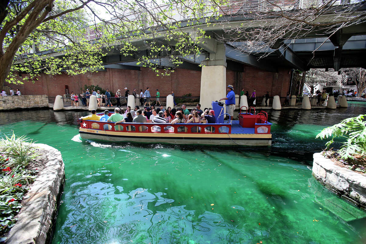 A barge passes makes its way under budding trees and green water as St. Patrick's Day is celebrated on the Riverwalk and La Villita on March 16, 2013.