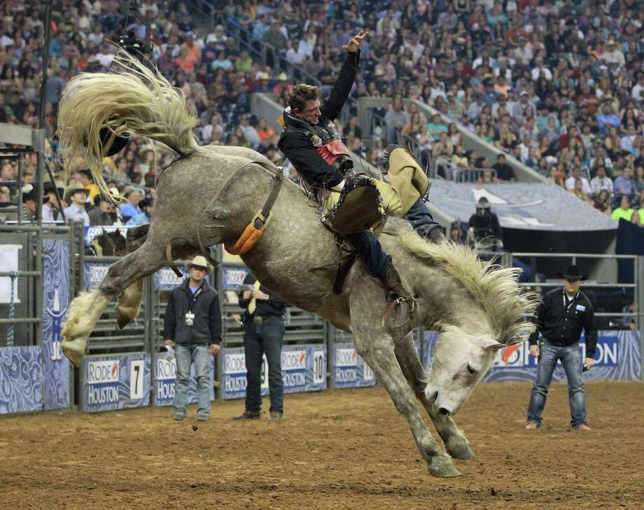 Tom McFarland rides his way to a championship in the Bareback Riding event during the final BP Super Series Championship at the Houston Livestock Show and Rodeo Saturday, March 16, 2013, in Houston. Photo: Karen Warren, Houston Chronicle / © 2013 Houston Chronicle