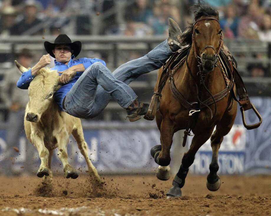 Tyler Waguespack wrestles a steer during the Steer Wrestling competition  at the Houston Livestock Show and Rodeo Saturday, March 16, 2013, in Houston. Photo: Karen Warren, Houston Chronicle / © 2013 Houston Chronicle