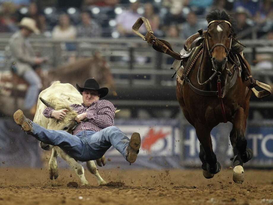 Kyle Irwin wrestles a steer during the Steer Wrestling competition  at the Houston Livestock Show and Rodeo Saturday, March 16, 2013, in Houston. Photo: Karen Warren, Houston Chronicle / © 2013 Houston Chronicle